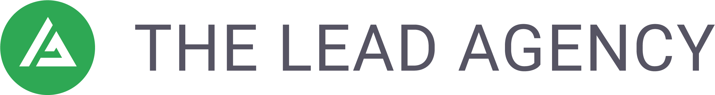 The Lead Agency